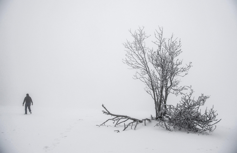 schneeh hen in deutschland wo liegt schon schnee wo wird es schneien. Black Bedroom Furniture Sets. Home Design Ideas