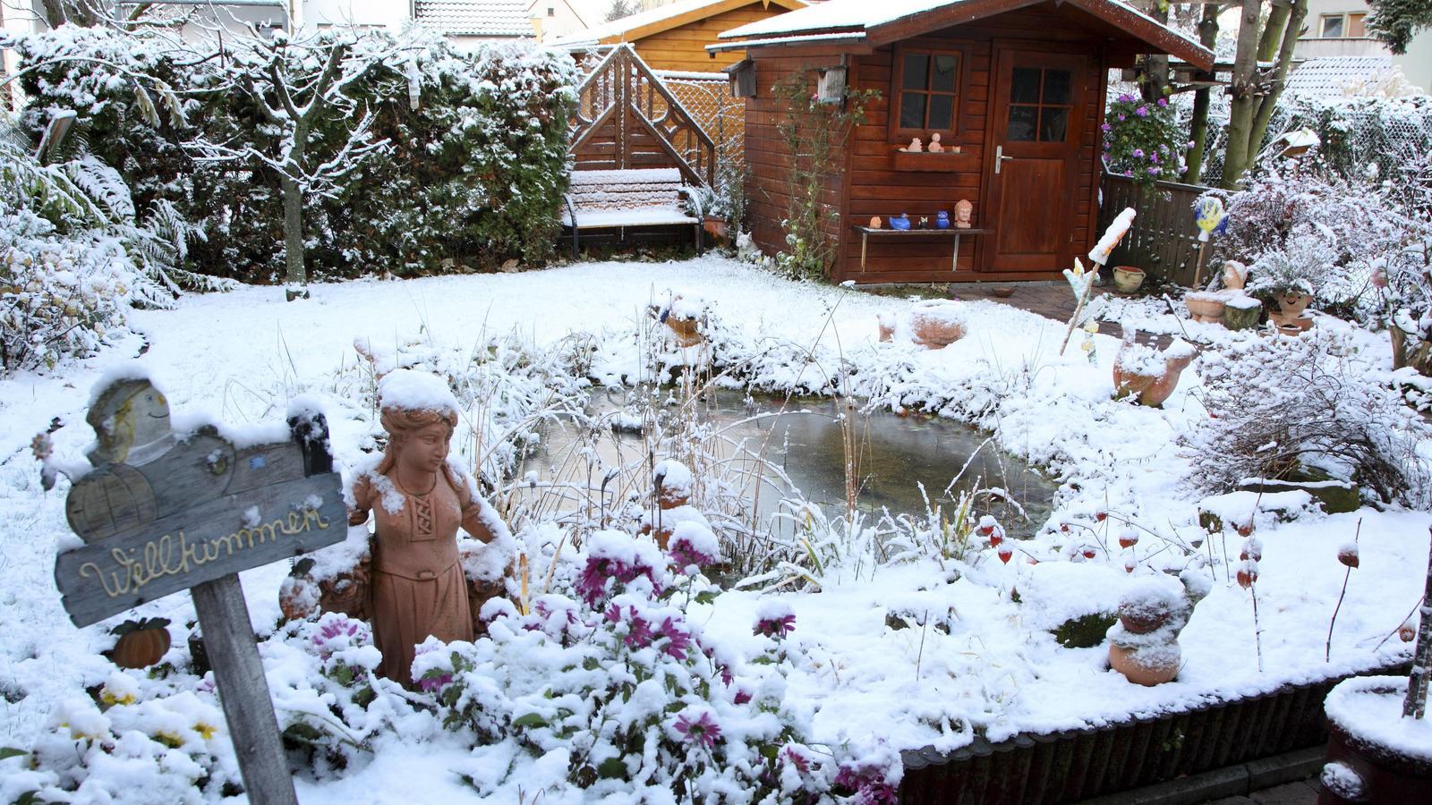 Gartenteich winterfest machen wir erkl ren wie es geht for Fische im teich winter